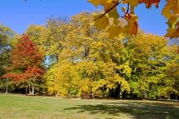 Herbst 001