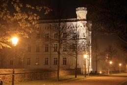 Magdeburg bei Nacht 004